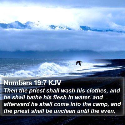 Numbers 19:7 KJV Bible Verse Image