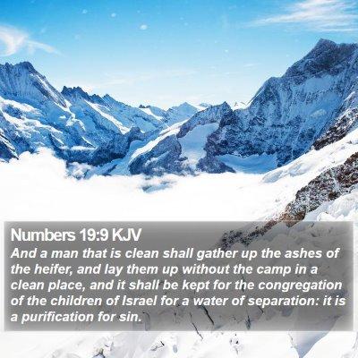 Numbers 19:9 KJV Bible Verse Image