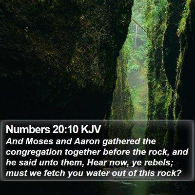 Numbers 20:10 KJV Bible Verse Image