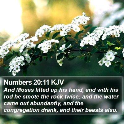 Numbers 20:11 KJV Bible Verse Image