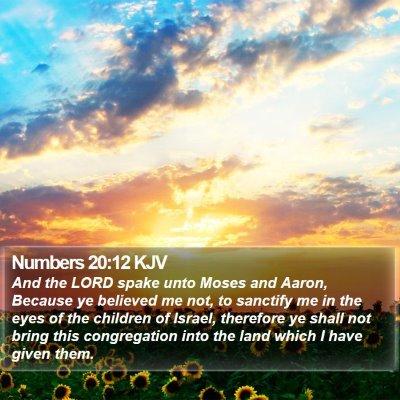 Numbers 20:12 KJV Bible Verse Image