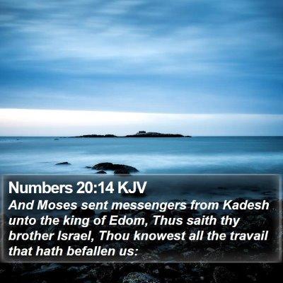 Numbers 20:14 KJV Bible Verse Image