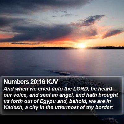 Numbers 20:16 KJV Bible Verse Image