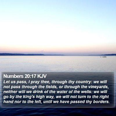 Numbers 20:17 KJV Bible Verse Image