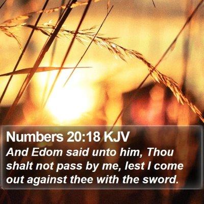Numbers 20:18 KJV Bible Verse Image