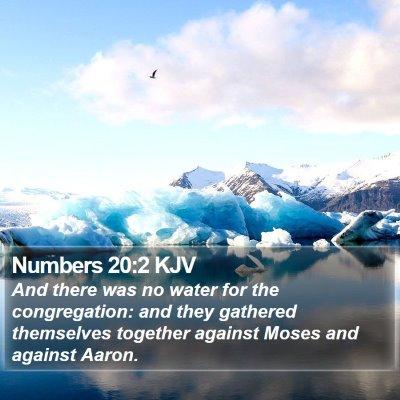 Numbers 20:2 KJV Bible Verse Image