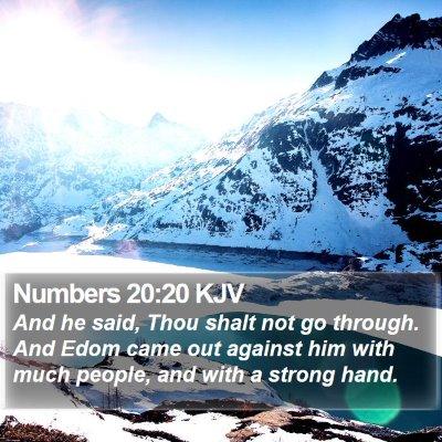 Numbers 20:20 KJV Bible Verse Image