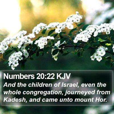 Numbers 20:22 KJV Bible Verse Image