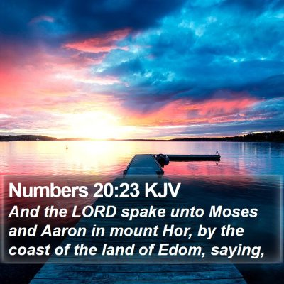 Numbers 20:23 KJV Bible Verse Image