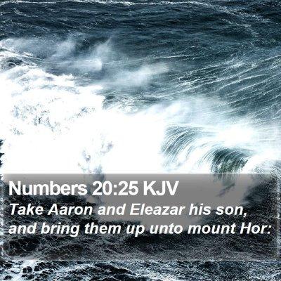 Numbers 20:25 KJV Bible Verse Image