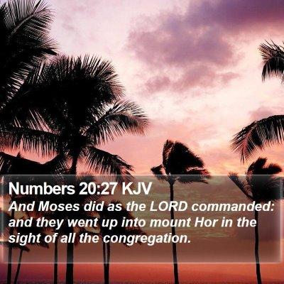 Numbers 20:27 KJV Bible Verse Image