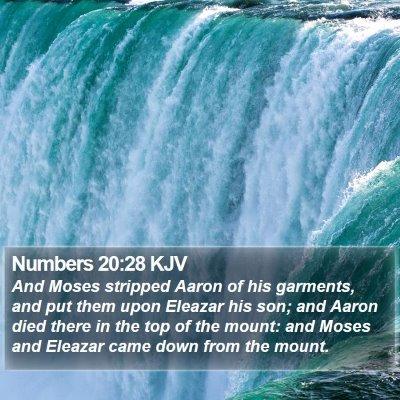 Numbers 20:28 KJV Bible Verse Image