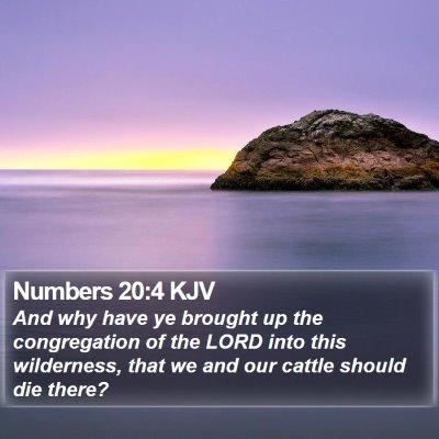 Numbers 20:4 KJV Bible Verse Image