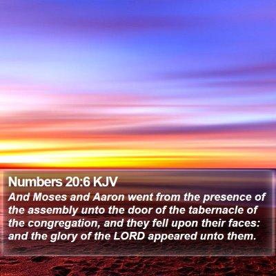 Numbers 20:6 KJV Bible Verse Image