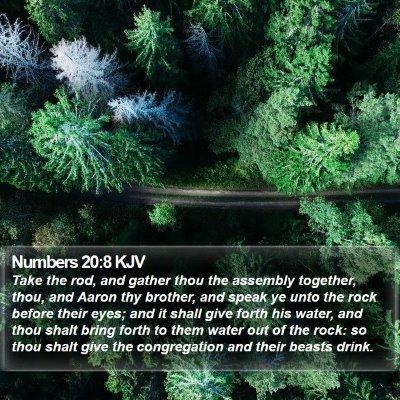 Numbers 20:8 KJV Bible Verse Image