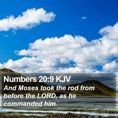 Numbers 20:9 KJV Bible Verse Image