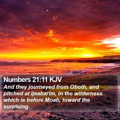 Numbers 21:11 KJV Bible Verse Image