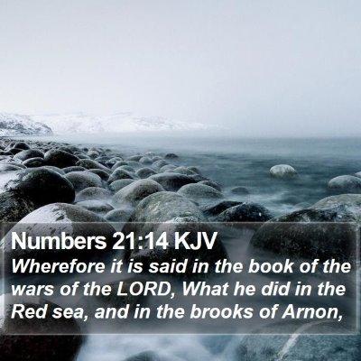 Numbers 21:14 KJV Bible Verse Image