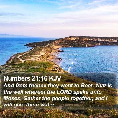 Numbers 21:16 KJV Bible Verse Image