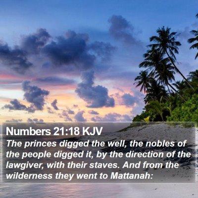 Numbers 21:18 KJV Bible Verse Image