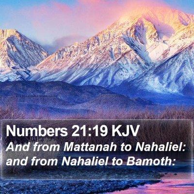 Numbers 21:19 KJV Bible Verse Image