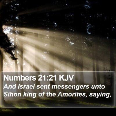 Numbers 21:21 KJV Bible Verse Image