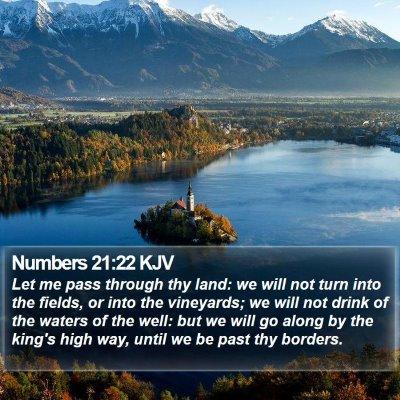 Numbers 21:22 KJV Bible Verse Image