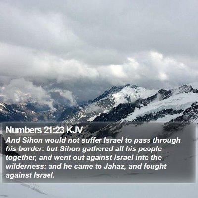 Numbers 21:23 KJV Bible Verse Image