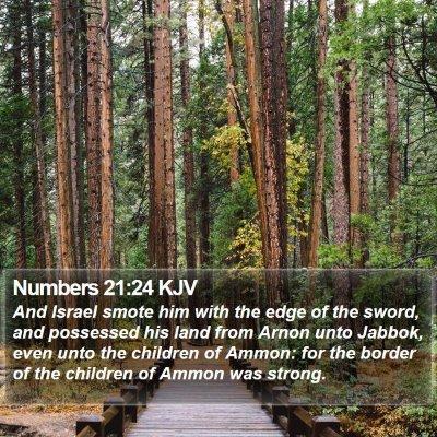 Numbers 21:24 KJV Bible Verse Image