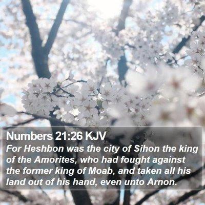 Numbers 21:26 KJV Bible Verse Image