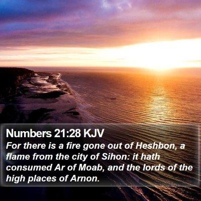 Numbers 21:28 KJV Bible Verse Image