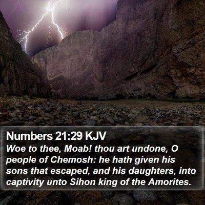 Numbers 21:29 KJV Bible Verse Image