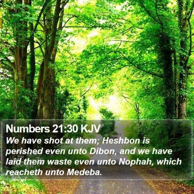 Numbers 21:30 KJV Bible Verse Image