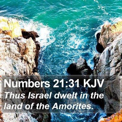 Numbers 21:31 KJV Bible Verse Image