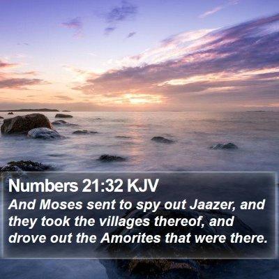 Numbers 21:32 KJV Bible Verse Image
