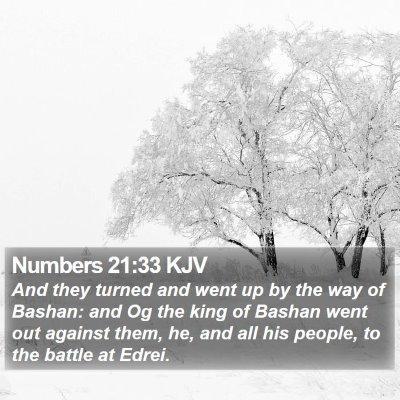 Numbers 21:33 KJV Bible Verse Image