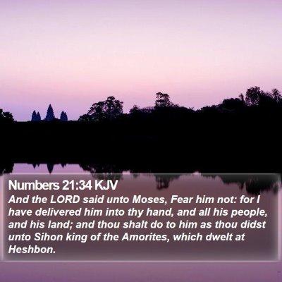Numbers 21:34 KJV Bible Verse Image