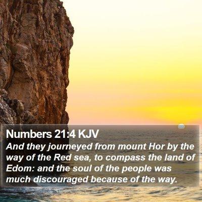 Numbers 21:4 KJV Bible Verse Image