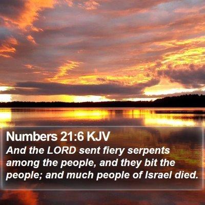 Numbers 21:6 KJV Bible Verse Image