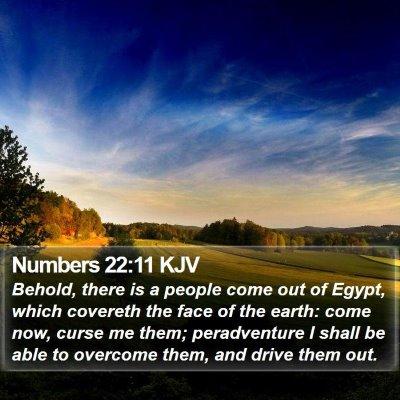 Numbers 22:11 KJV Bible Verse Image