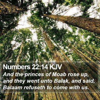 Numbers 22:14 KJV Bible Verse Image