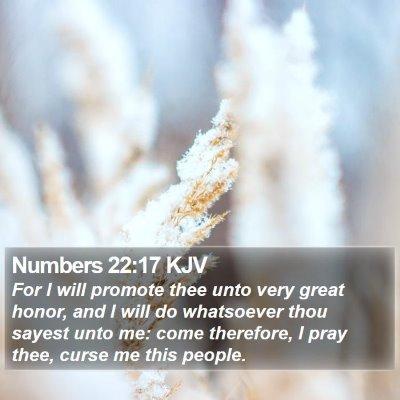 Numbers 22:17 KJV Bible Verse Image
