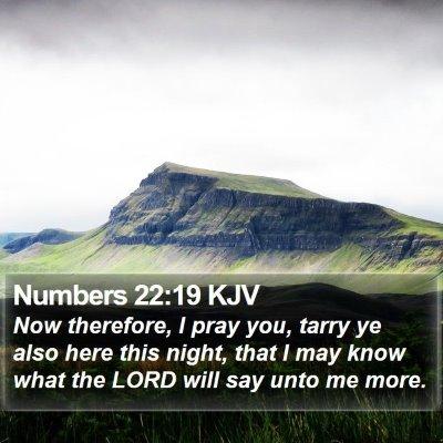 Numbers 22:19 KJV Bible Verse Image