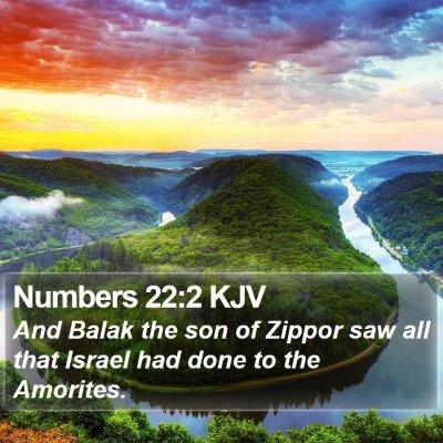 Numbers 22:2 KJV Bible Verse Image