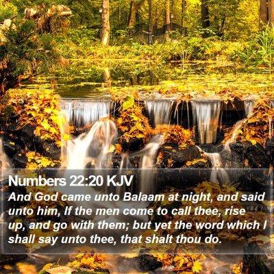 Numbers 22:20 KJV Bible Verse Image