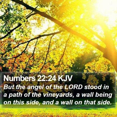 Numbers 22:24 KJV Bible Verse Image