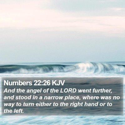 Numbers 22:26 KJV Bible Verse Image