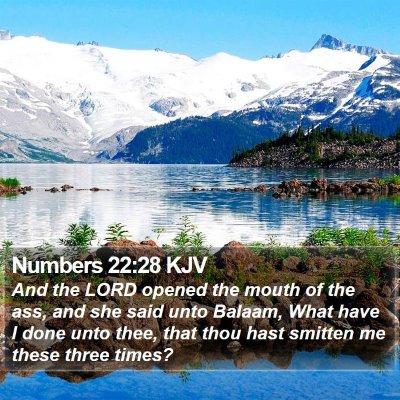 Numbers 22:28 KJV Bible Verse Image