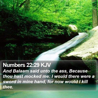 Numbers 22:29 KJV Bible Verse Image