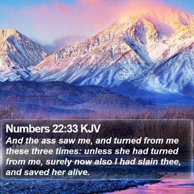 Numbers 22:33 KJV Bible Verse Image